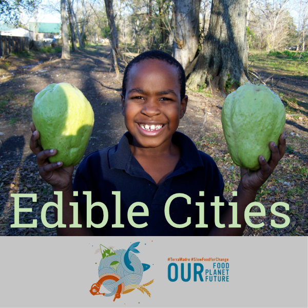HERO-EdibleCities-webinar-600x600.jpg